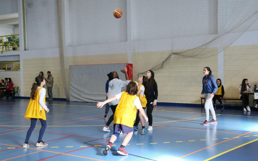 Tenis basquetebol
